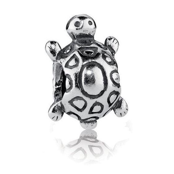 Pandora hela, kilpikonna 790158